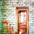 Abandonded Farm Door by Daniel Thompson