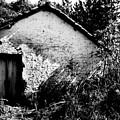 Abandoned by Amarildo Correa