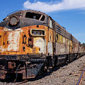 Abandoned Bessemer And Lake Erie Trains Schellville California by Brian Maroevich