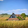 Abandoned Corn Field House by Douglas Barnett
