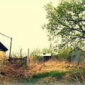 Abandoned Farm Yard by Curtis Tilleraas