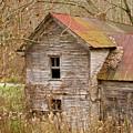 Abandoned Farmhouse In Kentucky by Douglas Barnett