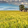 Abandoned Farmhouse by John Trax
