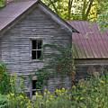 Abandoned Farmhouse On Stacy Fork by Douglas Barnett