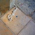 Abandoned Fishing Knot by Charles Stuart