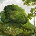 Abandoned Garden by Michael Scherer