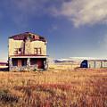 Abandoned House by Catherine Avilez