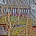 Abandoned House-don Robinson State Park-enhanced by Larry Jost