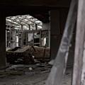 Abandoned by Jordan Mayle