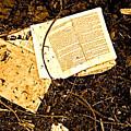 Abandoned Kp Book 1 by Simonne Mina