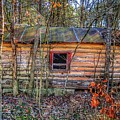 Abandoned Log Cabin by John Myers