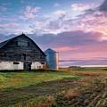 Abandoned Manitoba Farm  by Harriet Feagin