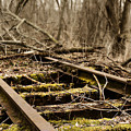 Abandoned Railroad 1 by Scott Hovind