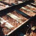 Abandoned Railtracks by Valentino Visentini