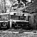Abandoned School Bus by Trish Tritz