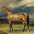 Abdul Medschid The Chestnut Arab Horse by Carl Constantin Steffeck