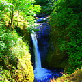 Above Onionta Falls by Lisa Rose Musselwhite