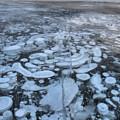 Abraham Lake Ice Bubbles by Adam Jewell