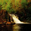 Abrams Falls by Tress Chapin