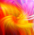 Abstract 0902 L by Howard Roberts