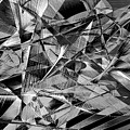 Abstract 9637 by Rafael Salazar
