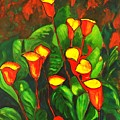 Abstract Arum Lilies by Caroline Street