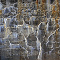Abstract Bleeding Concrete by David Arment