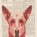 Abstract Dog On Dictionary by Keshava Shukla