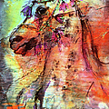 Abstract Expressive Arabian Stallion Art by Ginette Callaway
