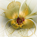 Abstract Flower With Silky Elegance by Karin Kuhlmann