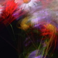 Abstract Flowers One by Jeff Townsend