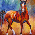 Abstract Horse Attitude by Mary Jo Zorad