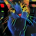 Abstract Kitty by The Follmers