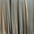 Abstract Lodgepole Pine 2 by Whispering Peaks Photography