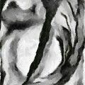 Abstract Monochome 154 by D A Diggs