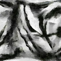 Abstract Monochome 158 by D A Diggs