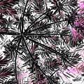 Abstract Of Ever Green Bush by Debra Lynch