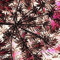 Abstract Of Low Growing Shrub  by Debra Lynch