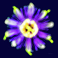 Abstract Passion Flower In Violet Blue And Green 002b by Ricardos Creations