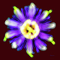 Abstract Passion Flower In Violet Blue And Green 002r by Ricardos Creations