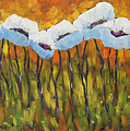 Abstract Poppies by Richard T Pranke