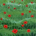 Abstract Poppy Field Decorative Artwork I by Irina Sztukowski