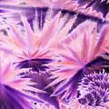 Abstract Purple Flowers by Irina Sztukowski