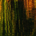 Abstract Reeds Triptych Bottom by Steven Sparks