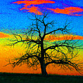 Abstract Single Tree Strong Colors by Mike Loudermilk