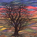 Abstract Sunset After Schiele by Regina Valluzzi