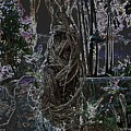 Abstract Twisted Tree by Lj White