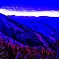 Abstract Views by Jennifer Lake