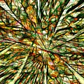 Abstraction 3099 by Marek Lutek