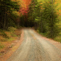 Acadia Backroads by Linda Cullivan